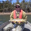 Woods Lake - Brown Trout